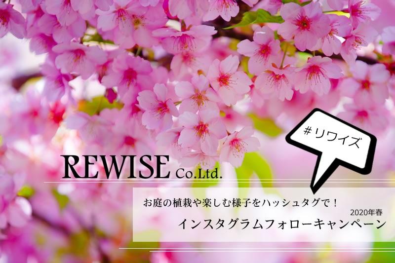 お庭のREWISEもインスタグラムやってます!